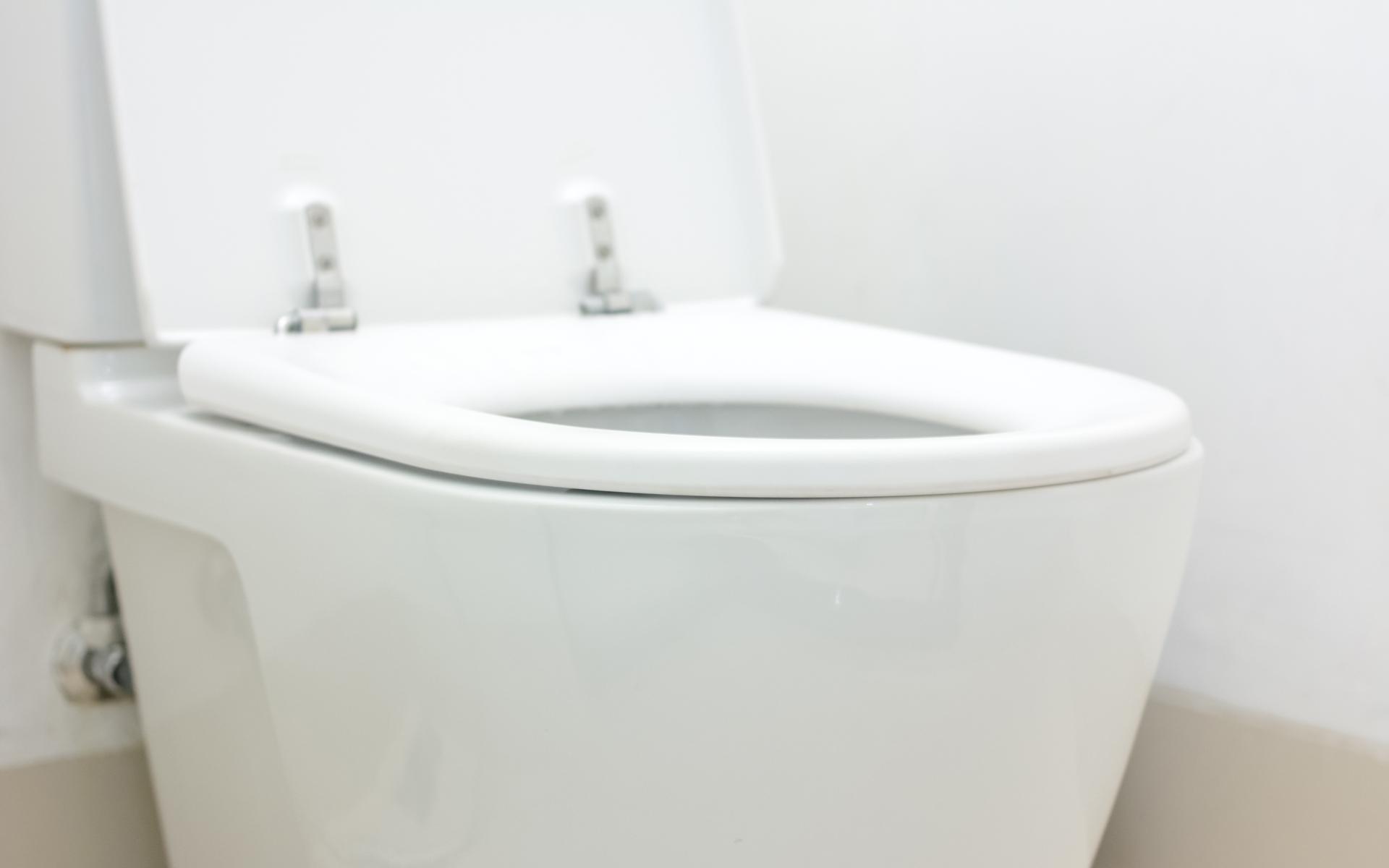 Mississauga Toilet Repair